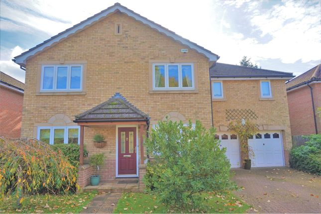 Thumbnail Detached house for sale in Cedar Park, Caterham