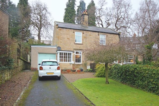 Thumbnail Semi-detached house for sale in Whetstone Green, Hexham