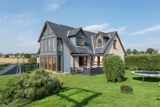 Thumbnail Detached house for sale in Kinnell, Kinnell, Arbroath, Angus