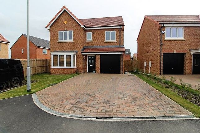 Thumbnail Detached house for sale in Primrose Gardens, Blyth