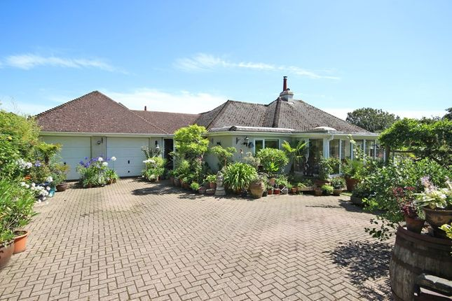 Thumbnail Detached bungalow for sale in Barton Common Road, Barton On Sea, New Milton