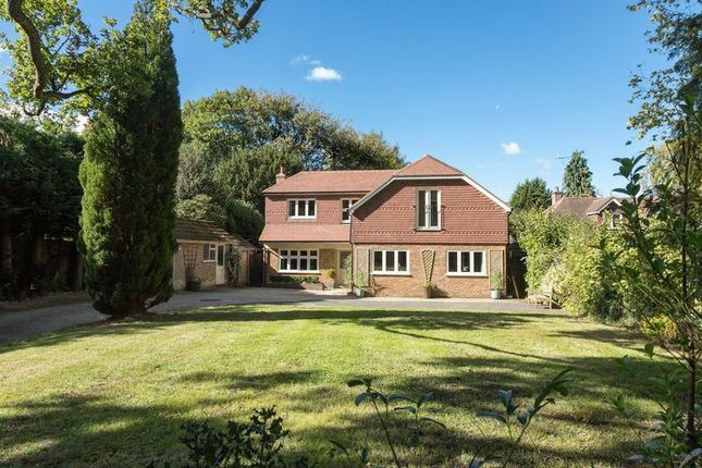 Thumbnail Detached house for sale in Hambledon Road, Godalming