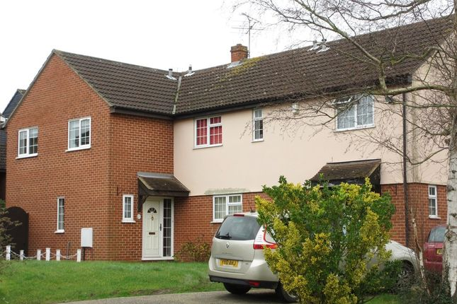 Thumbnail Semi-detached house to rent in Barnwell Drive, Hockley
