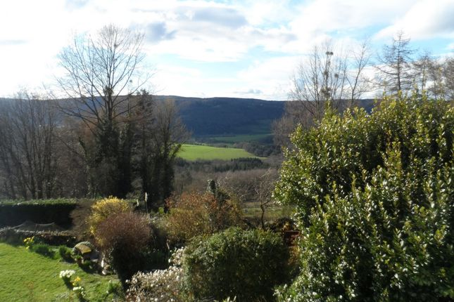 Thumbnail Cottage to rent in Cinderhill, St Briavels