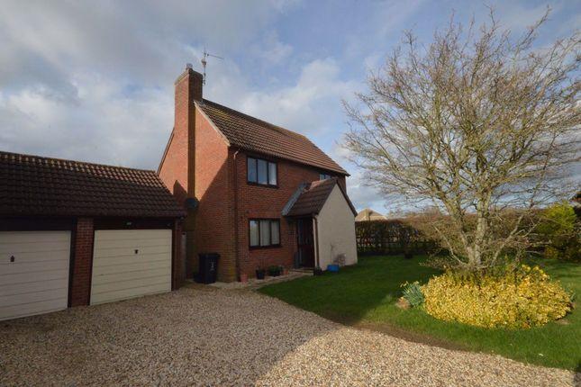 Thumbnail Property to rent in Yew Tree Gardens, South Marston, Swindon