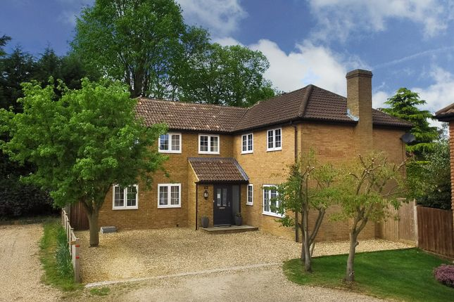 Thumbnail Detached house to rent in Parkfield, Chorleywood, Rickmansworth