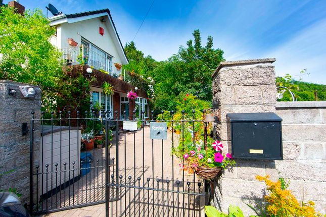 Thumbnail Detached house for sale in Park Lane, Treharris