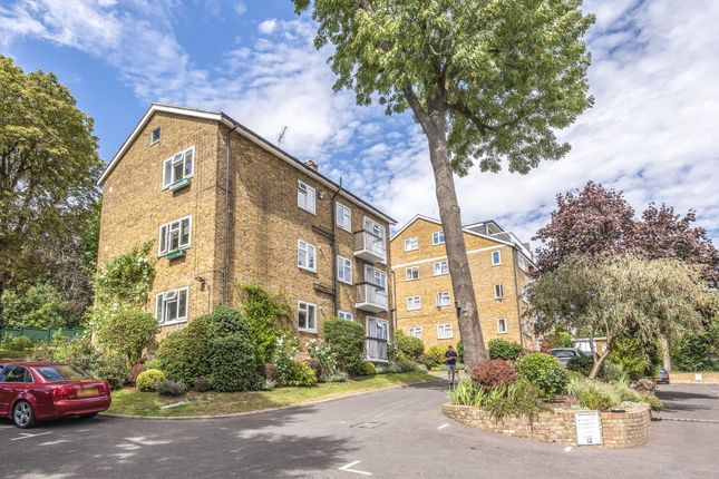Muswell Hill London N10 1 Bedroom Flat For Sale 55792318 Primelocation