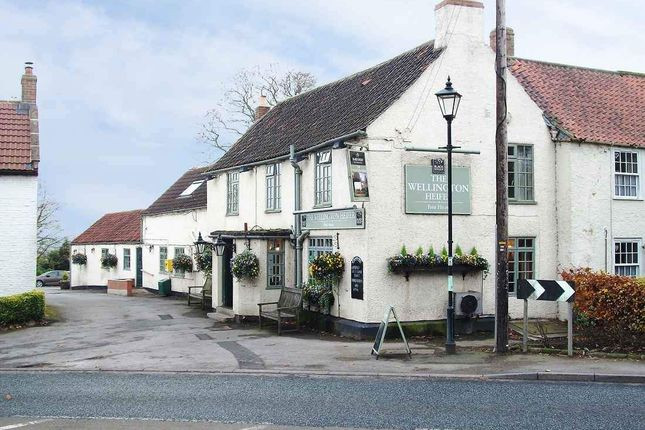 Thumbnail Pub/bar to let in Ainderby Steeple, Northallerton