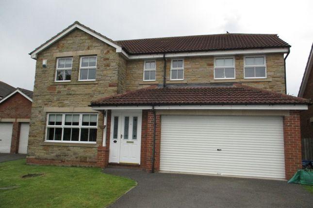 Thumbnail Detached house to rent in Meadow Walk, Carlton Near Stockton On Tees