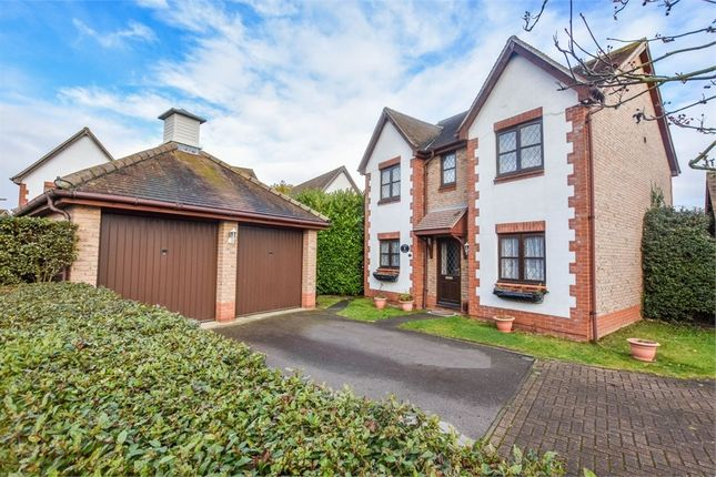 Thumbnail Detached house for sale in Gavin Way, Highwoods, Colchester, Essex