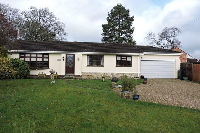 Thumbnail Detached bungalow for sale in Sandy Lane, Verwood
