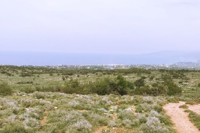 Land for sale in Neo Chorio, Polis, Cyprus
