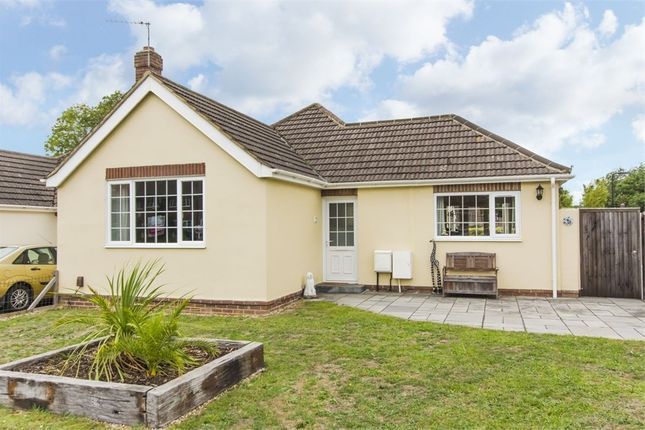 Thumbnail Detached bungalow for sale in Wide Lane, Swaythling, Southampton, Hampshire