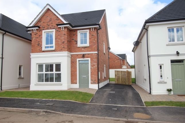 Thumbnail Detached house for sale in Foxton Crescent, Newtownabbey