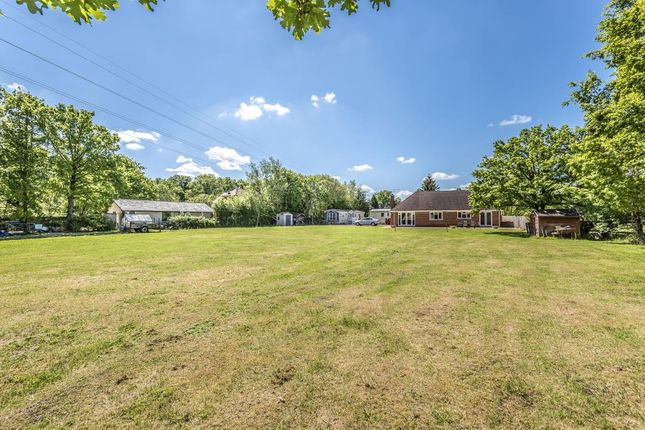 Thumbnail Detached bungalow for sale in Finchampstead, Wokingham