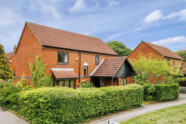 Thumbnail Detached house to rent in Wedgewood Avenue, Blakelands, Milton Keynes, Bucks