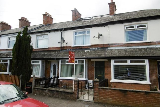 Thumbnail Terraced house to rent in St. Judes Crescent, Belfast