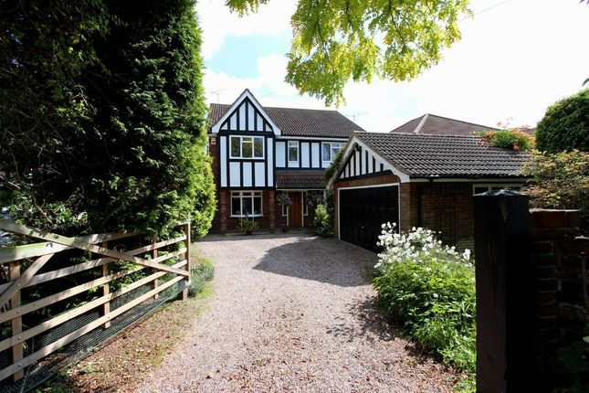 Thumbnail Detached house for sale in Nelson Road, Rayleigh