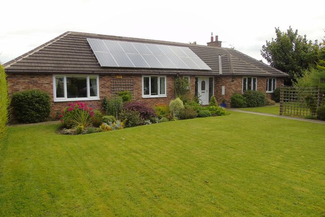 Thumbnail Bungalow for sale in Chibburn Court, Widdrington, Morpeth