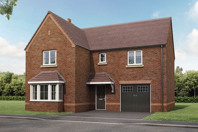"""Thumbnail Detached house for sale in """"The Grainger"""" at Gallows Hill, Warwick"""