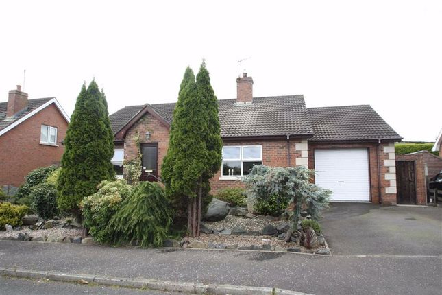 Thumbnail Detached bungalow for sale in Clanwilliams Cottages, Ballynahinch, Down