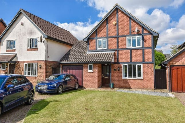 Thumbnail Detached house for sale in Hedgelands, Copford, Essex