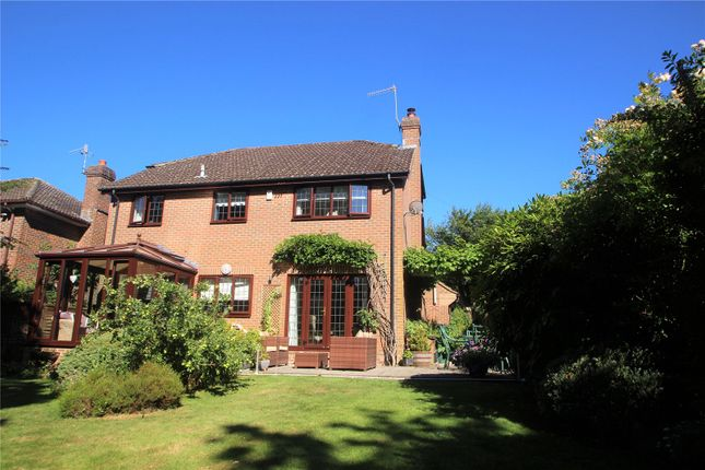Thumbnail Detached house for sale in Ashdown Road, Forest Row