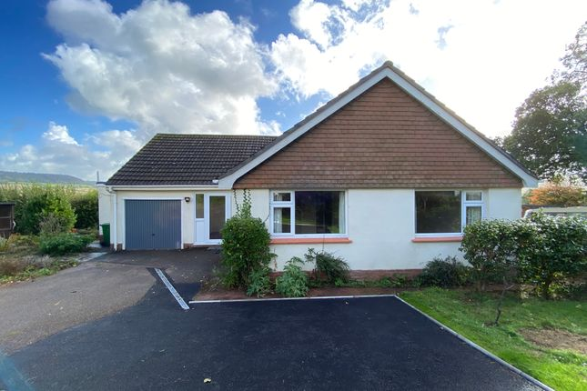 Thumbnail Detached bungalow to rent in Corefields, Sidford, Sidmouth