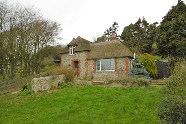 Thumbnail Property to rent in Morcombelake, Bridport, Dorset
