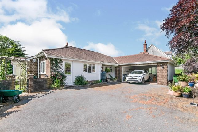 Thumbnail Detached bungalow for sale in Harcombe Road, Axminster