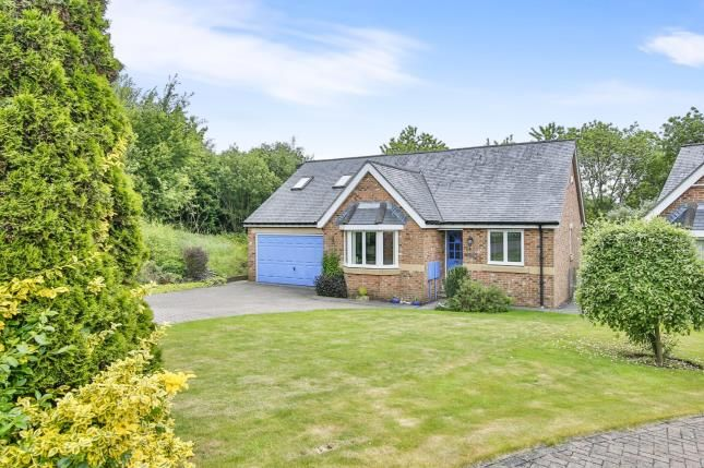 Thumbnail Detached house for sale in Lowes Rise, Nevilles Cross, Durham, Co Durham