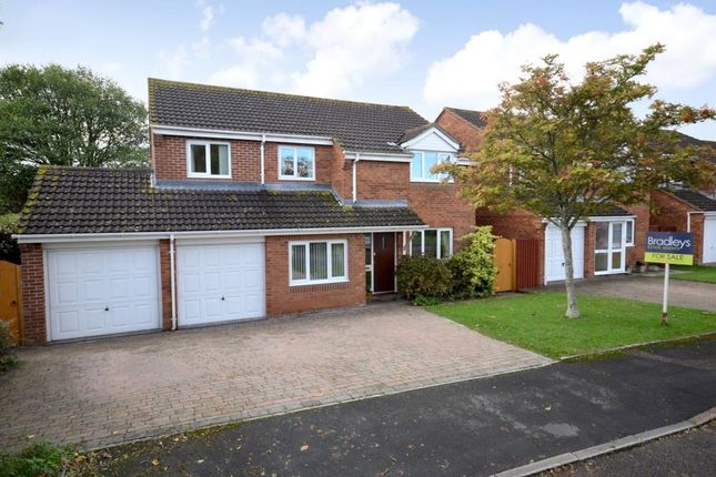 Thumbnail Detached house for sale in Pulpit Walk, Exeter, Devon