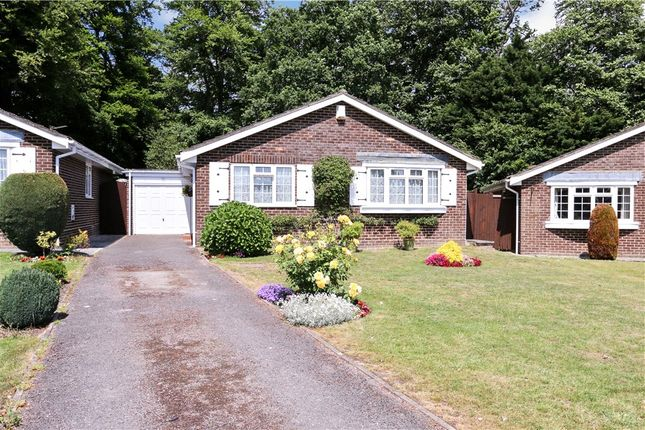 Thumbnail Detached bungalow for sale in Fairlawn Close, Rownhams, Southampton, Hampshire
