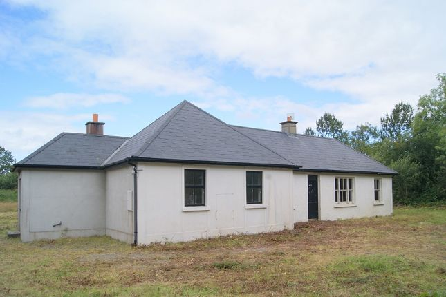Detached house for sale in Annagh Lane Cottage, Killenagh, Ballycanew, Wexford