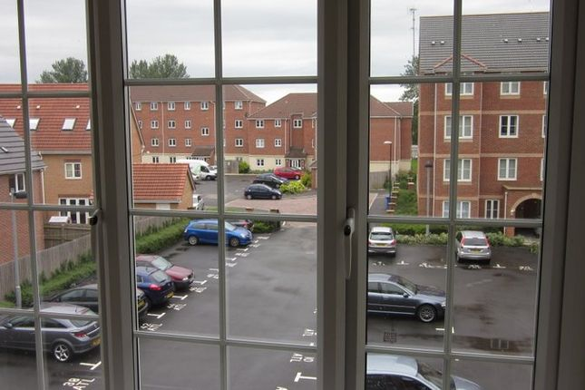 Rear View of Atlantic Way, Derby DE24