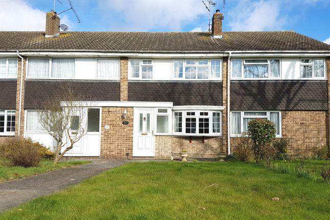 Thumbnail Terraced house for sale in Hawfinch Walk, Tile Kiln, Chelmsford