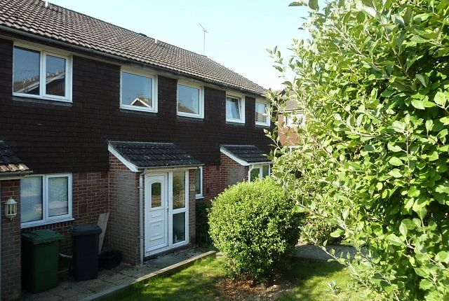 Thumbnail Property to rent in Stoneham Park, Petersfield