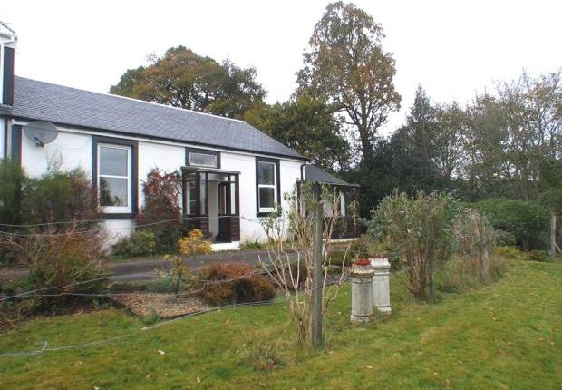 Thumbnail Semi-detached house to rent in Kilbride Avenue, Dunoon, Argyll And Bute