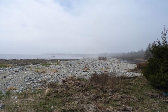 <Alttext/> of Carleton Village, Nova Scotia, Canada