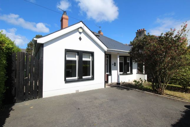 Thumbnail Detached house for sale in Brunswick Road, Bangor