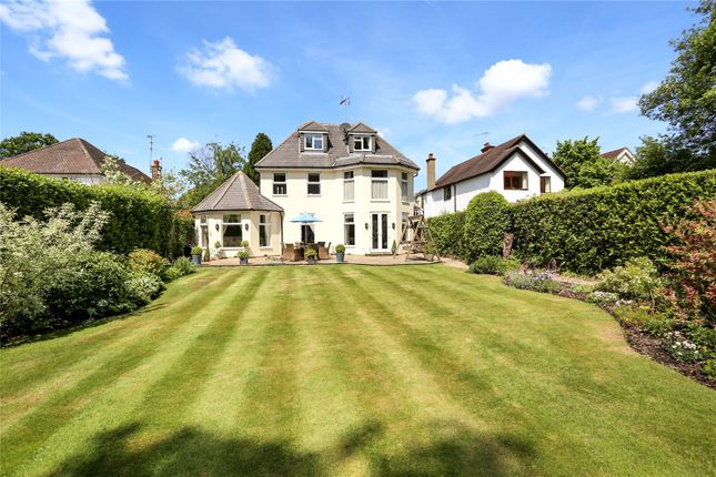 Thumbnail Detached house for sale in Chestnut Grove, Fleet, Hampshire