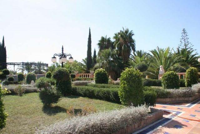 Gardens of Spain, Málaga, Marbella, Balcones De Sierra Blanca