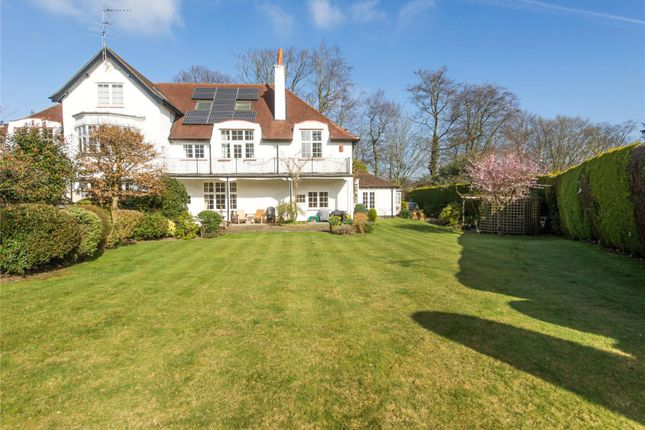 Thumbnail Semi-detached house for sale in Miles Lane, Cobham, Surrey