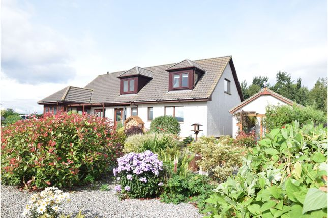 Thumbnail Detached bungalow for sale in Aird Place, Balblair