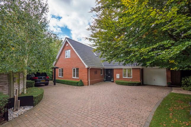 Thumbnail Detached house for sale in Ballingdon Gardens, Sudbury