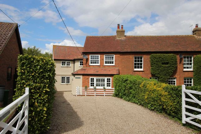 Thumbnail Semi-detached house for sale in Beckingham Street, Tolleshunt Major