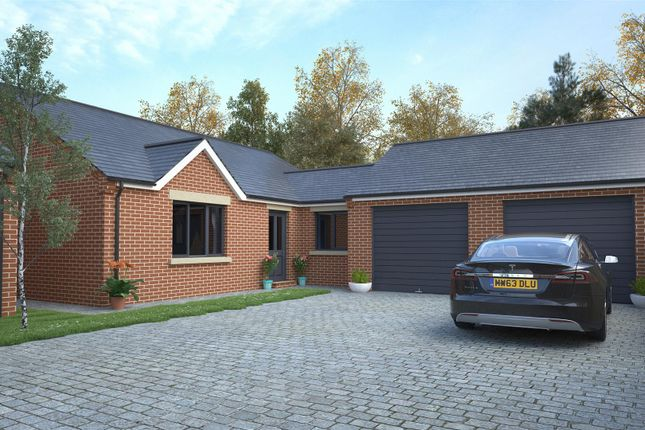 Thumbnail Detached bungalow for sale in Pit Lane, Pleasley, Mansfield