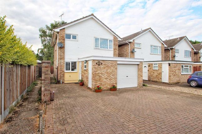 Thumbnail Detached house for sale in The Willows, Colchester
