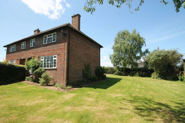 Thumbnail Semi-detached house to rent in Lawbrook Lane, Gomshall, Guildford